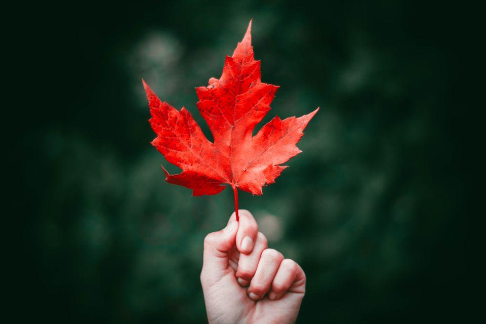 Jesen na Zlatiboru