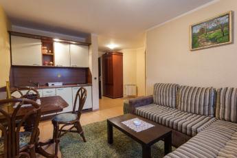 Vila Borova Lux apartman 4