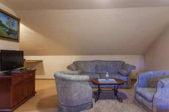 Vila Borova studio apartman 4