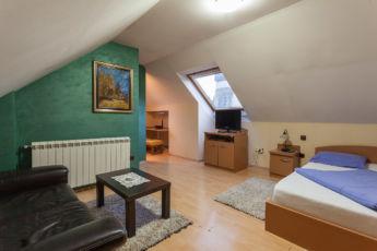 Vila Borova studio apartman