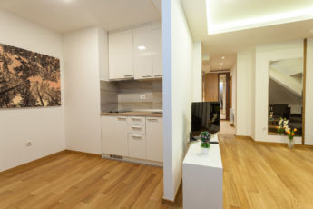 deluxe apartman kuhinja i pogled na dnevni boravak